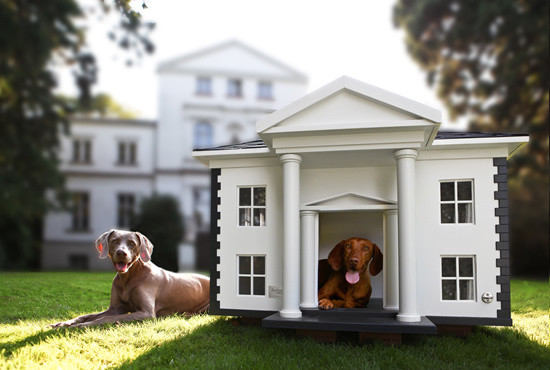 The Alabama Dog Mansion eclectic pet accessories