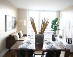 Park Slope Brooklyn Condominium modern