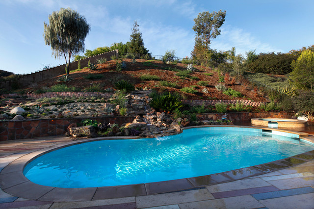 Backyard Hill Landscape Design Ideas, Carlsbad, CA  Contemporary