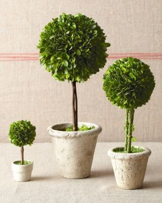Topiary Trees - Contemporary - Artificial Flowers Plants ...