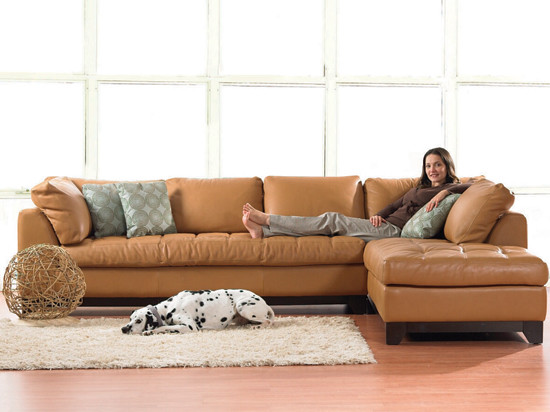 Valenza Sectional contemporary-sectional-sofas