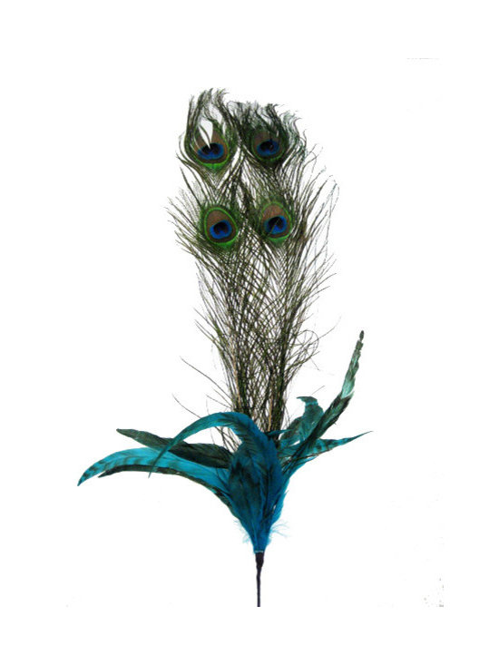 25-Inch Peacock Feather Spray -