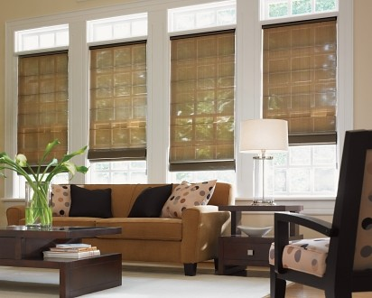 Sunroom Contemporary Window Treatments By Phelps