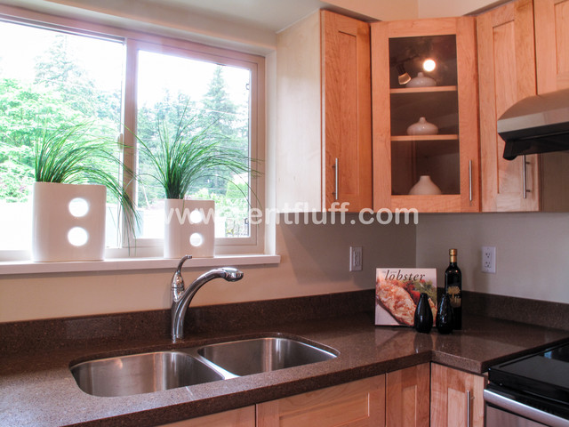 2205-West Hastings St contemporary-kitchen