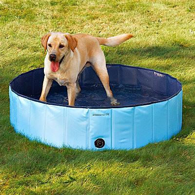 Splash About Dog Pool-Medium contemporary-pet-supplies