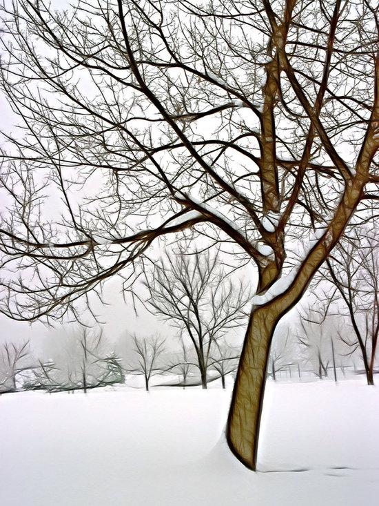 Foggy Morning Landscape - Fractalius 3 -