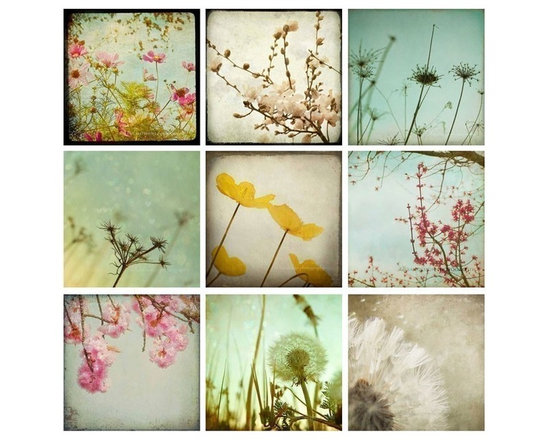Flower Wall Art - Flowers and dandelions large wall art photography set of nine 8x8 signed fine art photos taken by Maleah Torney. This set saves $125 off the regular price!