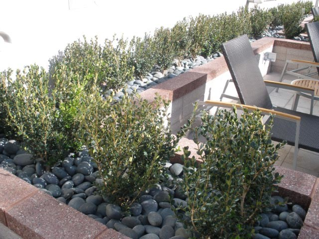 Landscaping with Mexican Beach Pebble outdoor-products