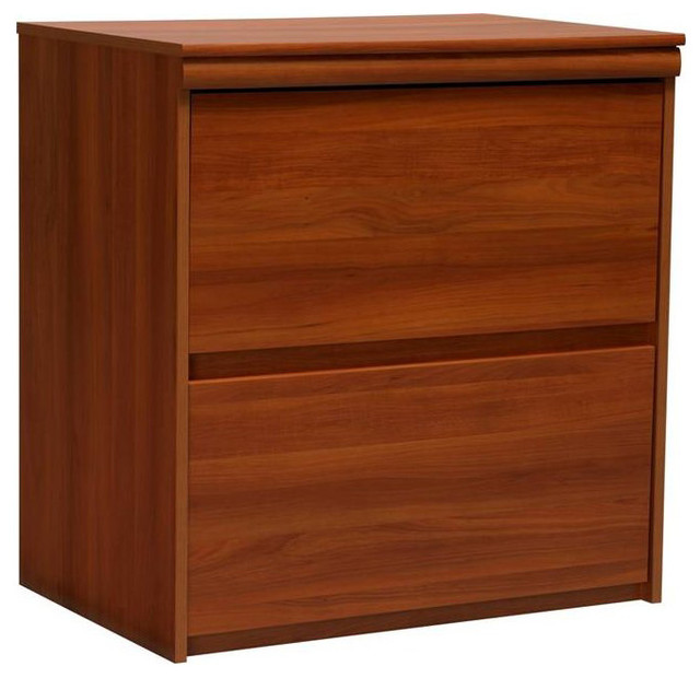 Ameriwood Industries 2 Drawer Lateral Wood File Storage Cabinet - Transitional - Filing Cabinets ...