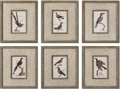 Uttermost Study of Birds Framed Wall Art - Set of 6 modern artwork