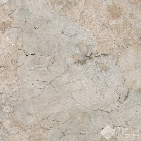 New Spring Cloud Polished Limestone 12x12 traditional-wall-and-floor-tile