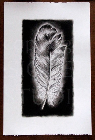 Large Charcoal Feather II Drawing, Original, Drawing ...