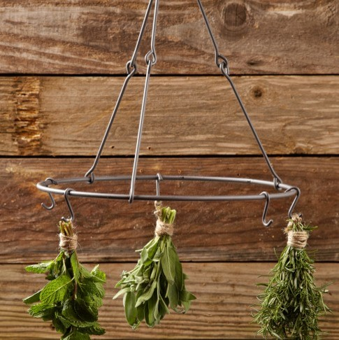 Herb Drying Rack - Traditional - Outdoor Products - by Williams-Sonoma