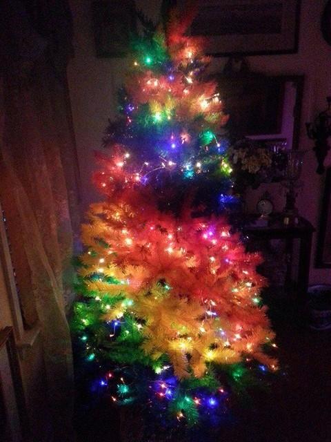 Customer Photos: Color Burst Rainbow Christmas Tree