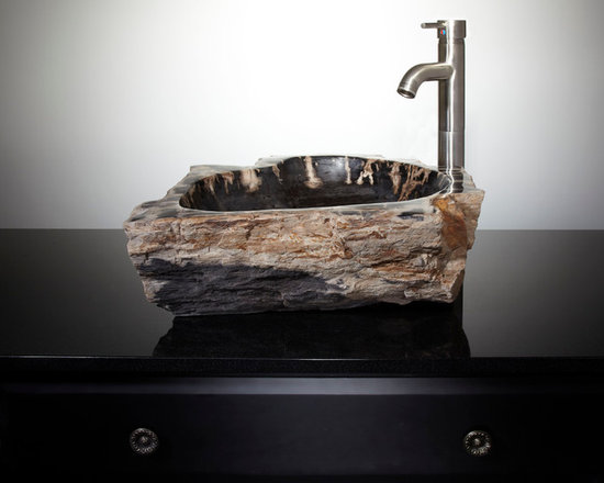 Natural Vessel Sinks (limited engagement) - Barfield Petrified Wood Vessel Sink, Signature Hardware