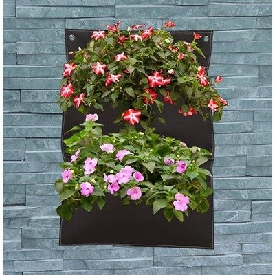 Creative Motion Wall Hanging Planter Contemporary