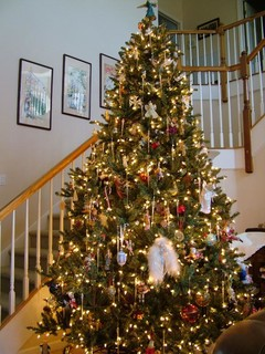 a lit and decorated Balsam Hill Blue Spruce Christmas tree