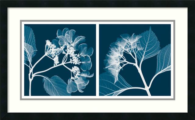 Steven N. Meyers 'Hydrangeas (Negative)' Framed Art Print 33 x 20-inch contemporary-artwork