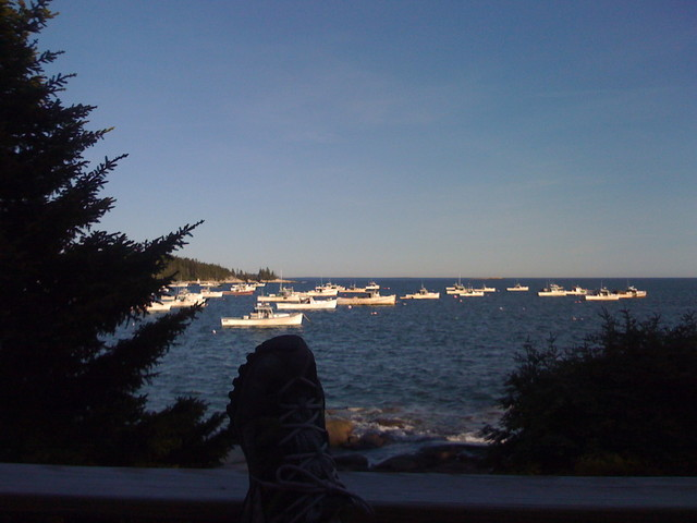 maine view  