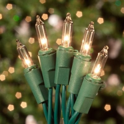 Commercial 50 ct. Clear Mini Lights with Green Wire 6 in. Spacing (Case) modern-holiday-decorations