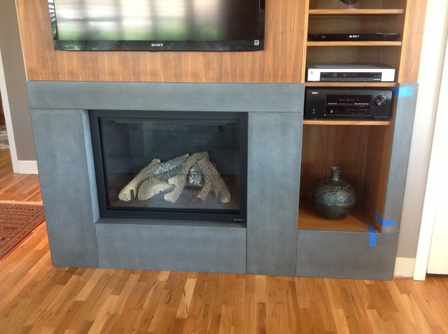 Wolberg contemporary-indoor-fireplaces