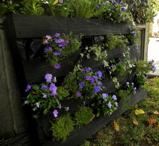 Seasonal Container Garden contemporary landscape