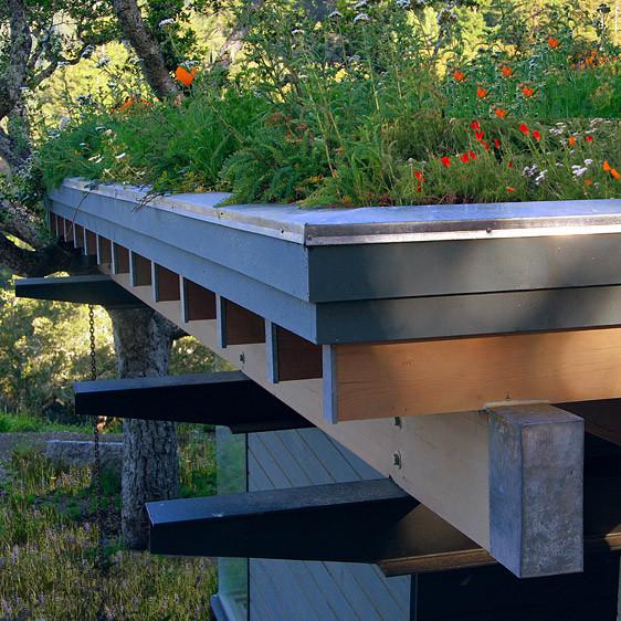 Feldman Architecture modern-exterior
