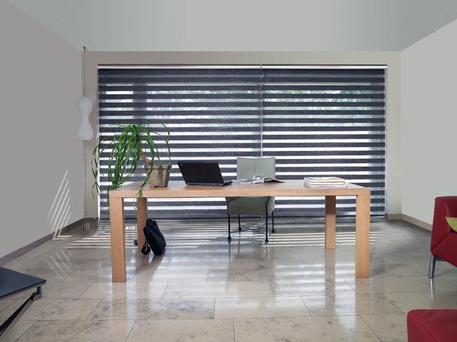 Vision Shades modern-windows