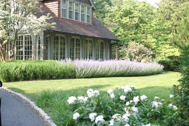 Front Garden traditional-landscape