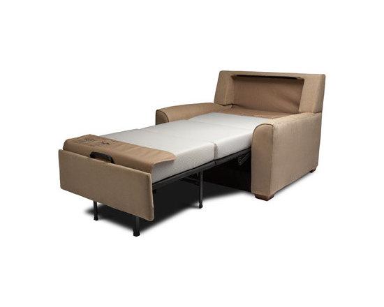 Sleeper Sofas - American Leather