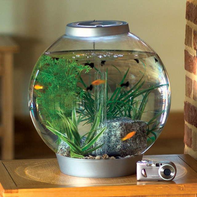 round fish tank - Aqua 8 Gallon Round Aquarium Fish Tank Aquariums ...
