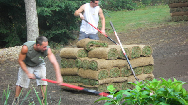 Mulch Entire Backyard : Complete Backyard Landscape Redo  Traditional  Landscape  boston