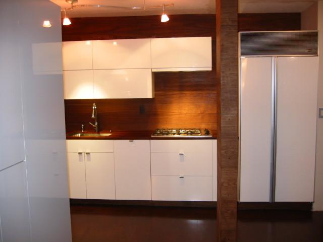 280 Park Avenue Condo - Kitchen contemporary-kitchen