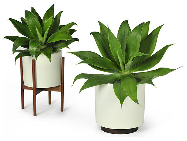 Modernica Case Study Planter W Plinth White Modern Indoor Pots And Pla