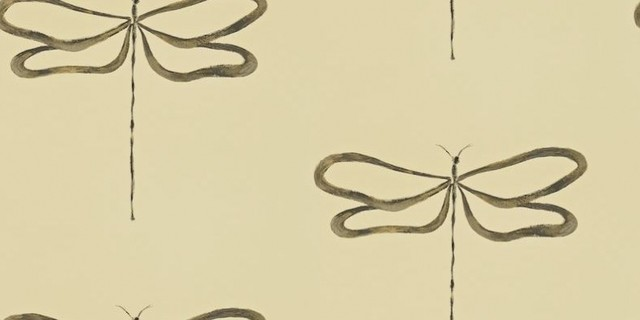 dragonfly wallpaper border related keywords suggestions