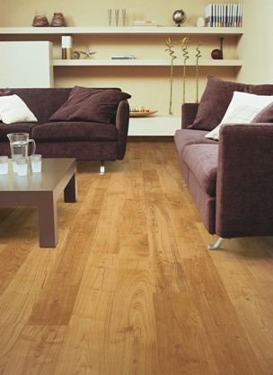 Quick-Step Laminate contemporary-laminate-flooring