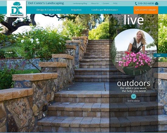 architect & construction firm web sites -