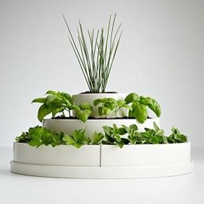 Three Tier Herb Planter And Seeds Contemporary Indoor