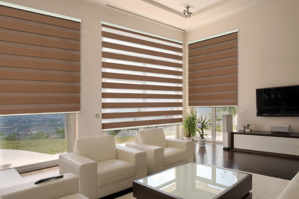 Dual Roller Shades : Neolux dual shades rustic dim out modern roller