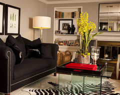 Organized collecting contemporary-living-room