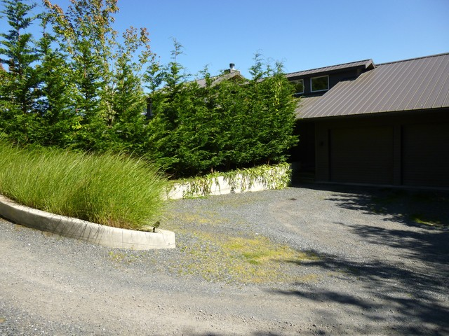 CONTEMPORARY UPDATED contemporary-landscape