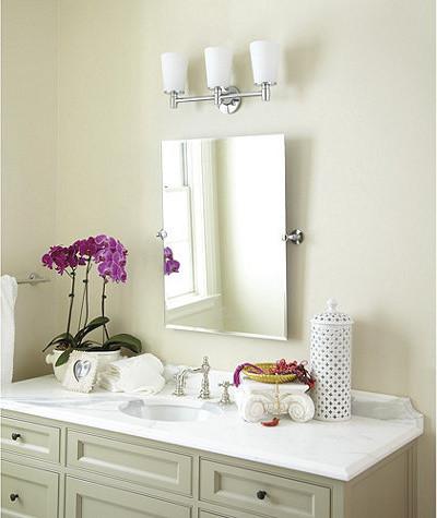 Logan Tilting Bath Mirror traditional-bathroom-mirrors