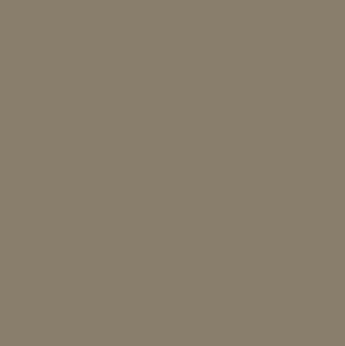 Paint Color Sw7032 Warm Stone Paint By Sherwin Williams