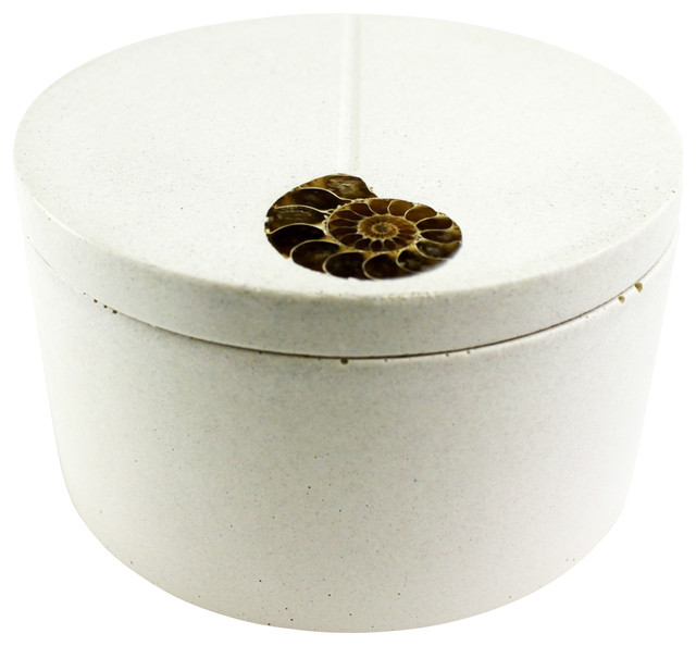Ammonite Inlayed Classic Salt Cellar, White modern-food-containers-and-storage