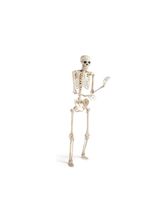Grandin Road - 5' Halloween Halloween Skeleton Figure - Life-size skeleton is so detailed, he's like the real thing. Crafted from durable plastic. Finished with a realistic, antique bone-toned finish. A hinged jaw and posable limbs make it possible to display him however you see fit. No bones about it – this is one realistic 5 ft. Skeleton. With a frightening level of detail, our durable plastic fellow is hand-painted and hinged at all joints for extreme realism. Hang him from the ceiling, pose him in a chair, or take him outside and drape him from a tree limb.  .  .  .  .