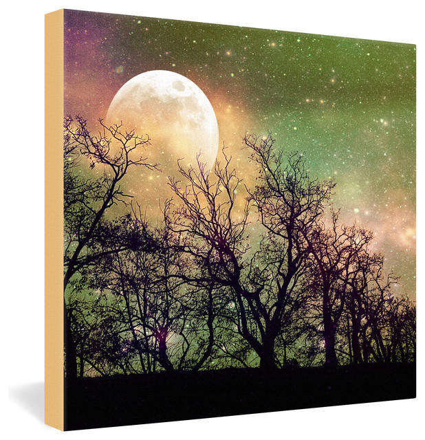 Shannon Clark Moon Magic Gallery Wrapped Canvas eclectic-prints-and-posters