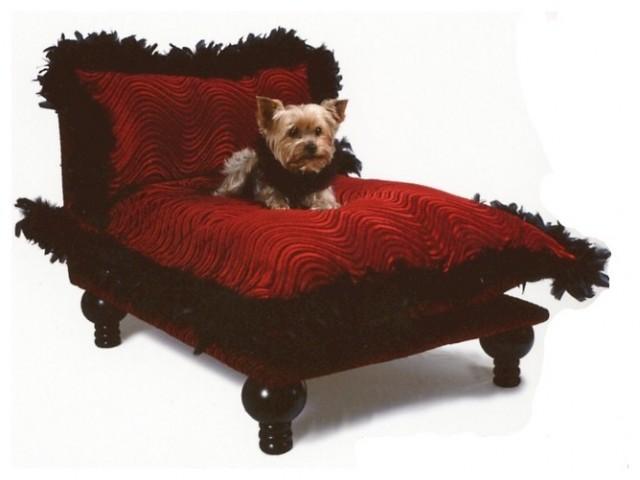 Celebrity Dog Bed dog-beds