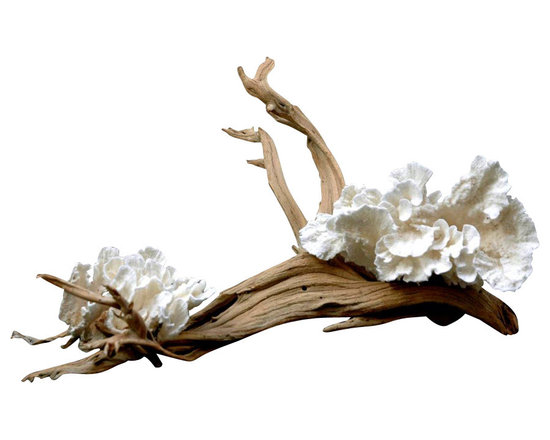 "Custom - Flowering Coral Centerpiece - Elegant sandblasted ghost wood branch with pure white ""flowering"" coral."