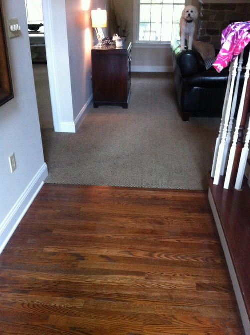 Hardwood Floor Dilemma
