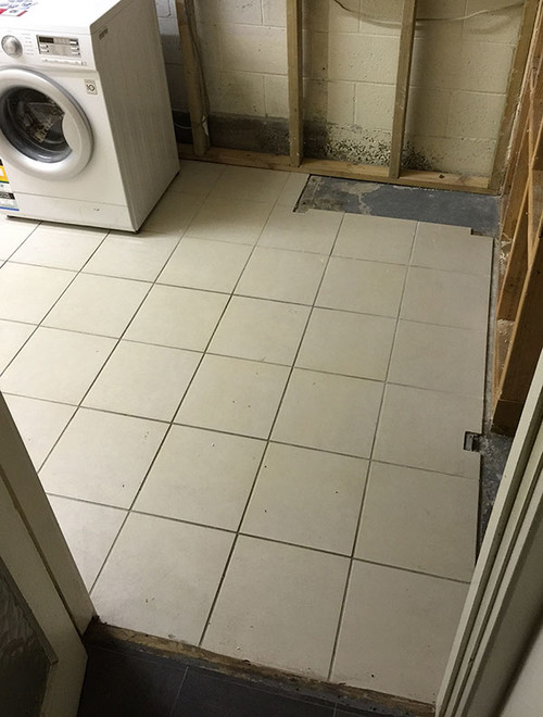 Need help with renovating a laundry raising the floor for External laundry doors